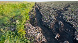 An Iowa Farmer Faces Weather Extremes